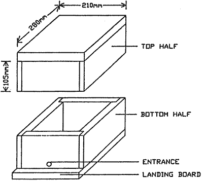 Bee Hive Boxes Dimensions