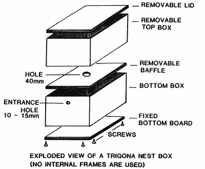 Drawing Of A Nest Box For Trigona Bees